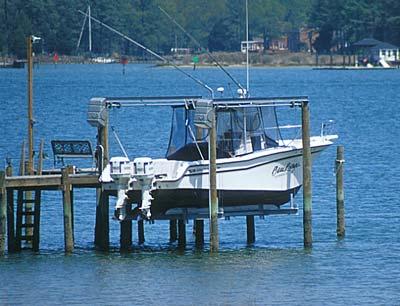 New point comfort chesapeake bay virginia gallery for Virginia saltwater fishing regulations